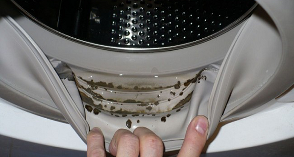 Photo of How To Remove Dangerous Mold And Unpleasant Odors From Your Washing Machine With 2 Ingredients
