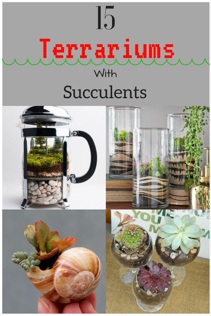 15-terrariums-with-succulents