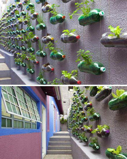 bottle-wall-garden2