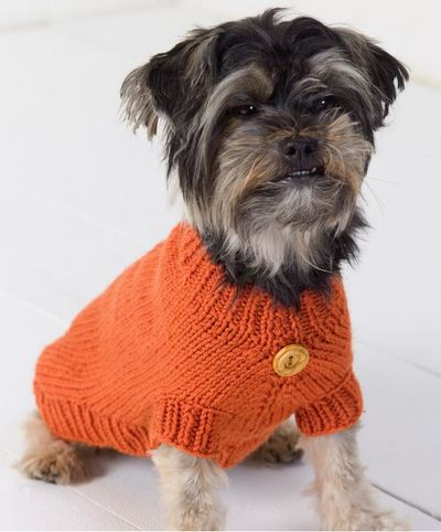 life-is-ruff-knit-dog-sweater_large400_id-865884