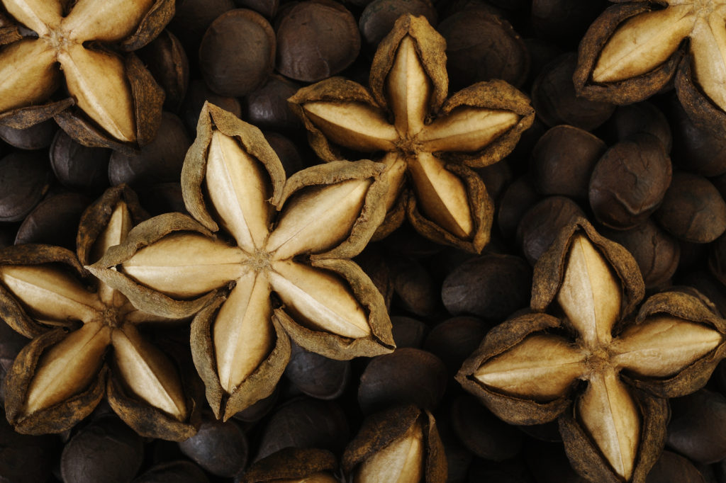 dried sacha inchi on roasted sacha inchi seeds background