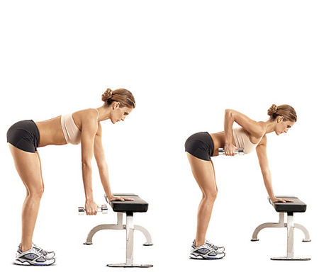 Seated Dumbbell One-Point Row - ZoomZee  Seated Dumbbell...